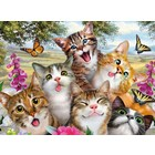 Ravensburger (fx shmidt) . RVB Friendly Felines Puzzle