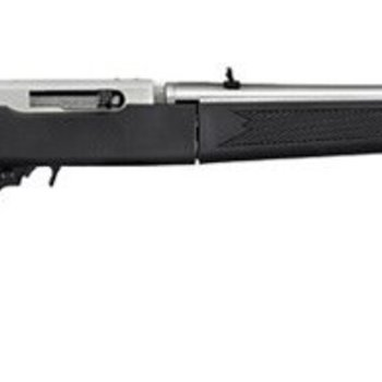 Ruger Ruger 10/22 Carbine Semi Auto Rifle 22 LR, 18.5 In Takedown Matte SS
