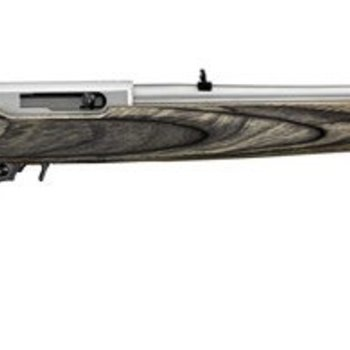 Ruger Ruger  10/22 Carbine Semi Auto Rifle 22 LR, RH, 10+1 Rnd 18.5 In Matte Stainless steel wood