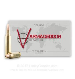 Nosler Norsler Armageddon 243 win Varmageddon Rifle Ammo FB Tipped/Var 55gr 3800fps 20/box