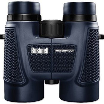 Bushnell Bushnell H2O 10 x 42-mm, Waterproof/Fogproof Roof Prism Binocular,  Black