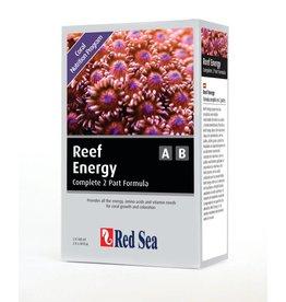 Reef Energy A