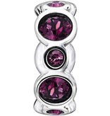 Chamilia Birthstone Jewels - February
