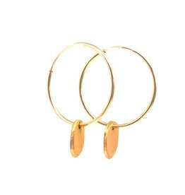 Erin Gray Gold Filled Hoop with Gold Medallion Earring
