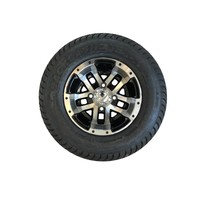 10 IN BLITTZ BCKLSH TIRE & WHEELS PKG