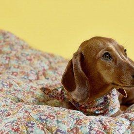 Lovemydog Ada Quilt Liberty print