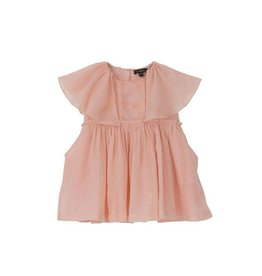Velveteen delphine dress- pink with gold