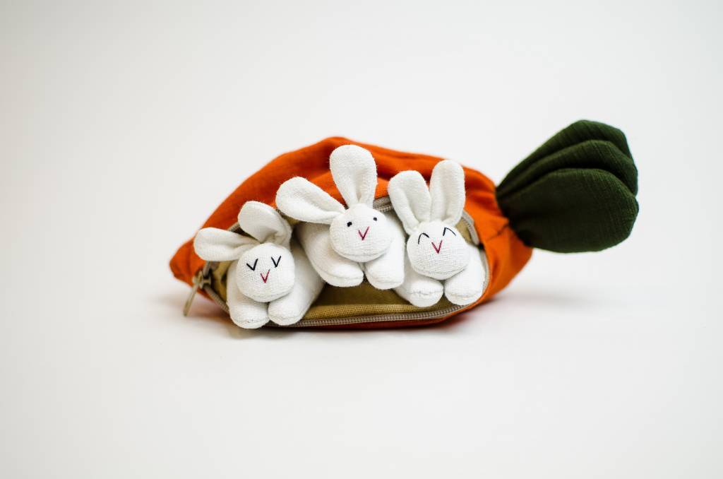 Rabbits in Carrot