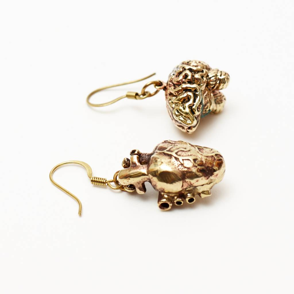 Br Anatomical Heart Brain Earrings