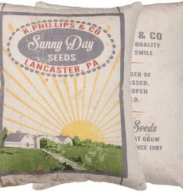 Primitives By Kathy Pillow/ Sunny Day Seeds