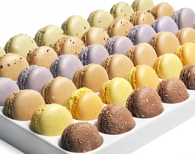 Bon304 Macarons Elysee Collection 6 Flavors 48ct Box
