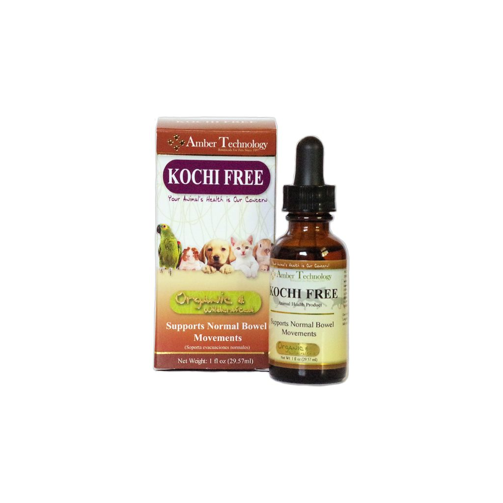 AMBER TECHNOLOGY KOCHI FREE 1oz