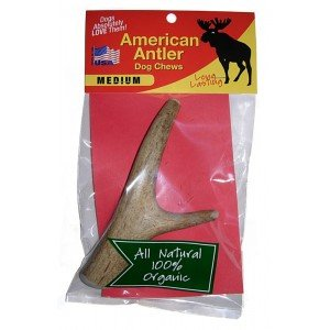AMERICAN ANTLER AMERICAN ANTLER DOG CHEW