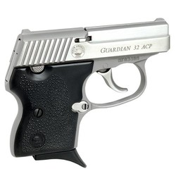 Prohib Handgun