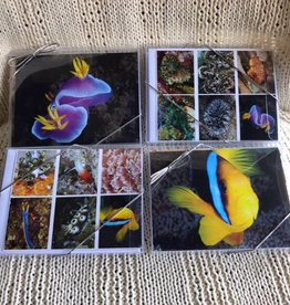 Sea Life Note Card Set