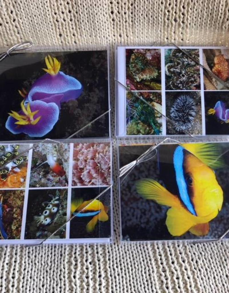 Note Card Set A
