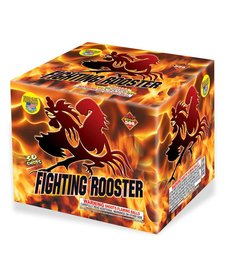 Fighting Rooster - Case 4/1
