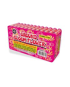Ground Bloom Flower, CE - Case 20/12/6