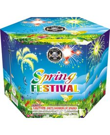Spring Festival - Case 12/1