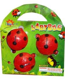 Lady Bugs, BM