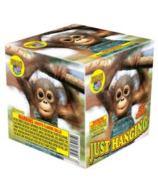 Just Hanging - Case 12/1