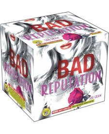 Bad Reputation - Case 4/1