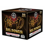 Big Power - Case 4/1