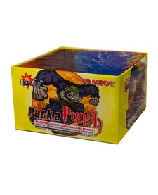 Pack a Punch - Case 24/1