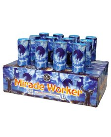 Miracle Worker - Case 2/1