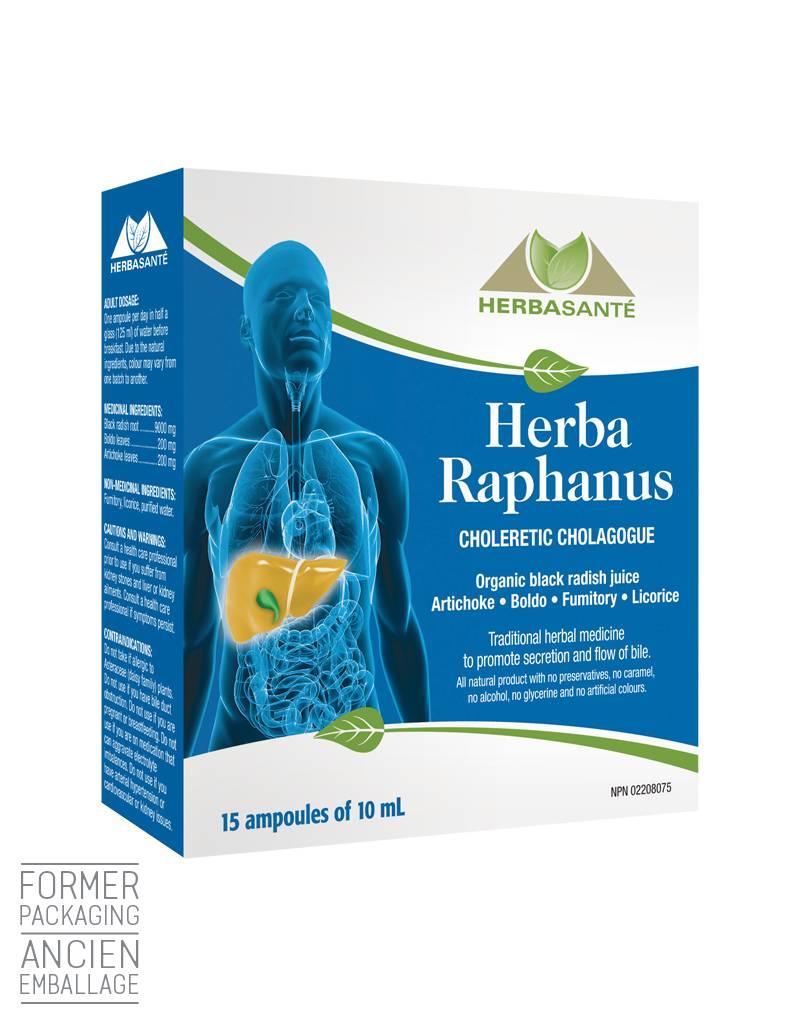 Herba Raphanus