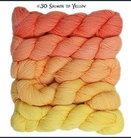 Frabjous Fibers Color Morph - Cheshire Cat mini skeins