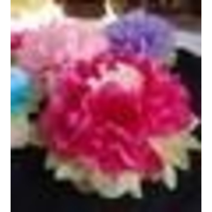 Multi Color Tissue Paper Flower Decorations 16""