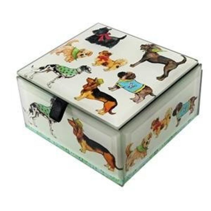 Dog Show Glass Box