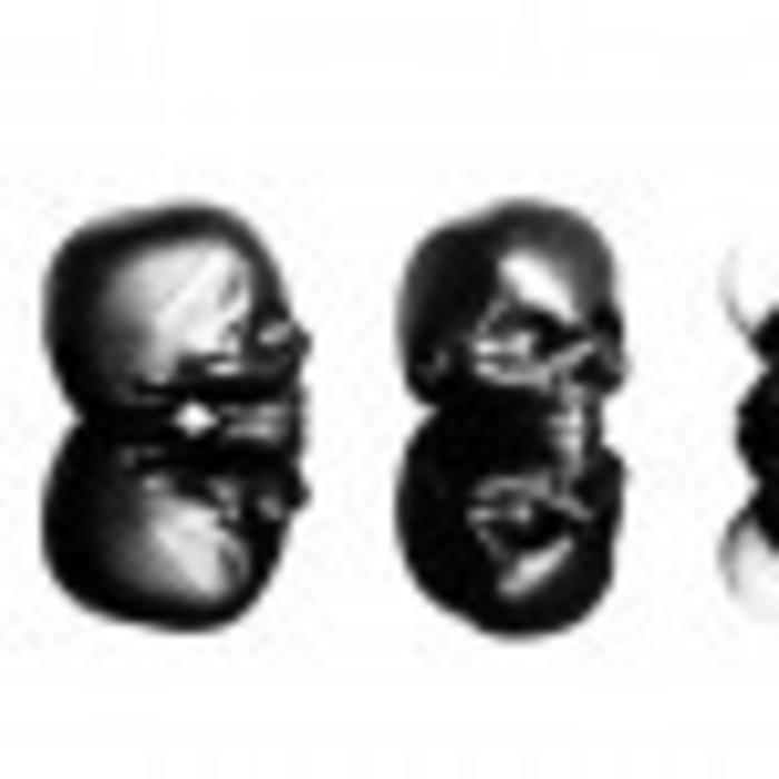 Black Skull Lipgloss- Mint