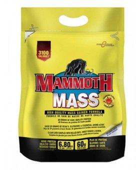 Mammoth Mammoth - Mass 15lb