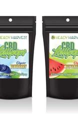 Heady Harvest Heady Harvest 60mg CBD Lollipops - Strawberry