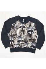 Nano Nano: Boy Raccoon Sweatshirt