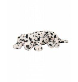 Douglas Douglas: Domino Dalmatian