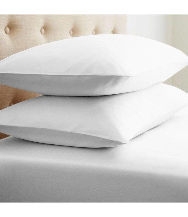 Lauren Taylor Jumbo White Duck Feather Jumbo Pillows - twin pack