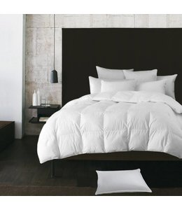 W - Home Level 1 - European Down Duvets