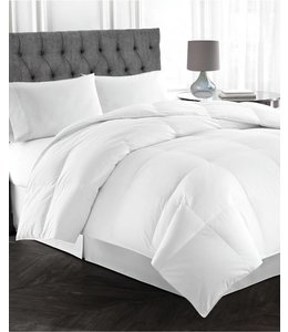 W - Home Pure Silk Around Pillows with Micro-Gel Core