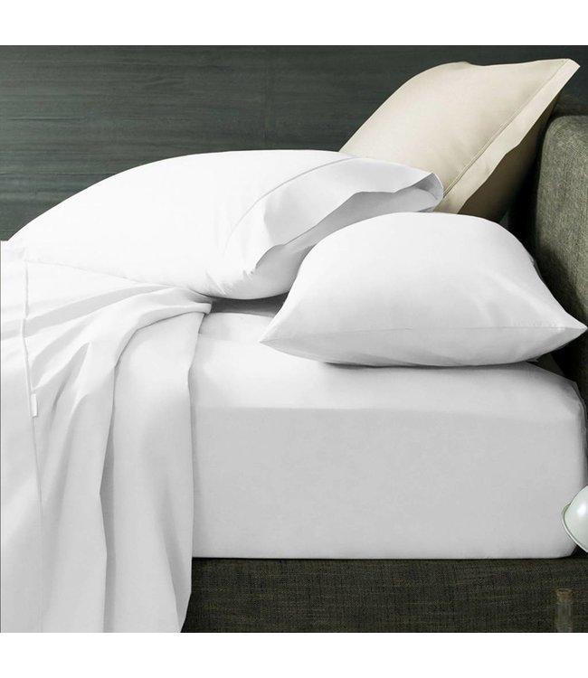 Lauren Taylor 300TC Hotel Linen Cotton Pillow Sham