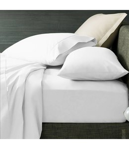 Lauren Taylor 300 Thread Count Combed Cotton Pillow Case Pairs
