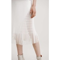 Dion Lee Triangle Perf Skirt