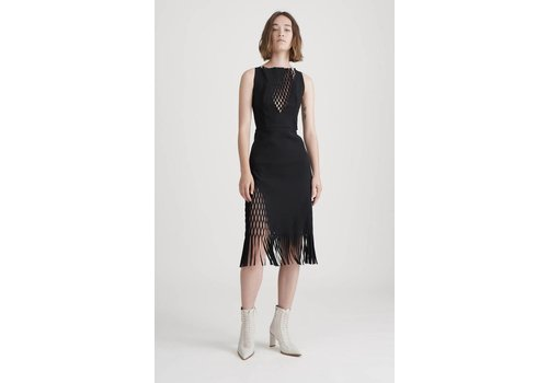 Dion Lee Mirror Dress