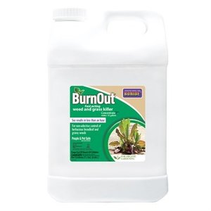 Pest and Disease Burnout II Weed & Grass Killer Concentrate - 2.5 gal