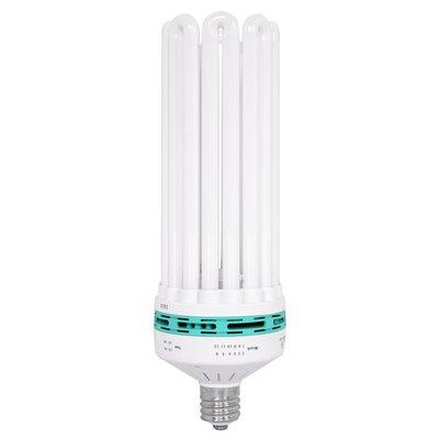 Lighting Feliz Compact Fluorescent Bulb- 250w Blue