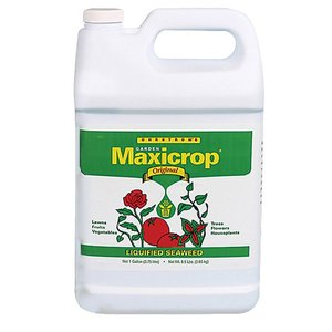 Outdoor Gardening Maxicrop Seaweed 0.1-0-1