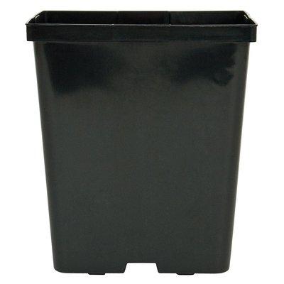"Outdoor Gardening Kord Square Black Pot - 5.5"""