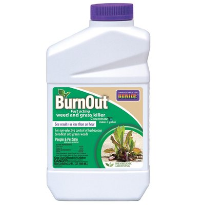 Pest and Disease Burnout II Weed & Grass Killer Concentrate - Qt